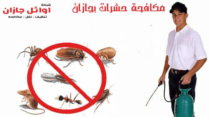 شركةمكافحة حشرات بجازان
